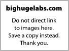 http://bighugelabs.com/flickr/output/motivator6855841.jpg