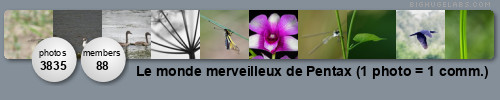 Le monde merveilleux de Pentax (1 photo = 1 comm.). Get yours at bighugelabs.com