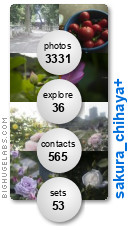 sakura_chihaya+. Get yours at bighugelabs.com/flickr
